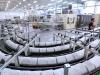Produktion von Hygienepapier Krapina, Kroatien (11)
